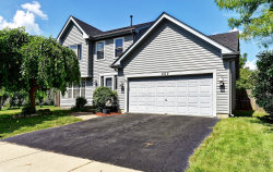 Photo of 665 Lakewood Farms Drive, BOLINGBROOK, IL 60490 (MLS # 10022521)