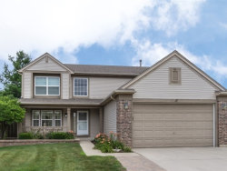 Photo of 17 S Conway Court, SOUTH ELGIN, IL 60177 (MLS # 10025289)