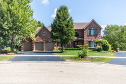 Photo of 6 Nadelhoffer Court, WOODRIDGE, IL 60517 (MLS # 10045401)