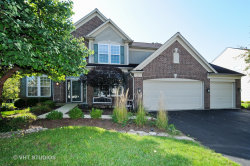 Photo of 3 Firethorn Court, BOLINGBROOK, IL 60490 (MLS # 10047692)