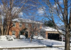 Photo of 1209 Sunnybrook Drive, NAPERVILLE, IL 60540 (MLS # 10048499)
