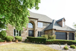 Photo of 10653 Maue Drive, ORLAND PARK, IL 60467 (MLS # 10050537)