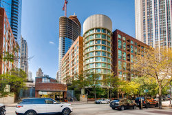 Photo of 480 N Mcclurg Court, Unit Number 313, CHICAGO, IL 60611 (MLS # 10051846)