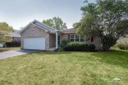 Photo of 132 Steamboat Lane, BOLINGBROOK, IL 60490 (MLS # 10052171)