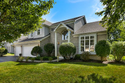 Photo of 5340 Sand Lily Drive, NAPERVILLE, IL 60564 (MLS # 10052663)