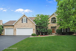 Photo of 4352 Camelot Circle, NAPERVILLE, IL 60564 (MLS # 10054173)