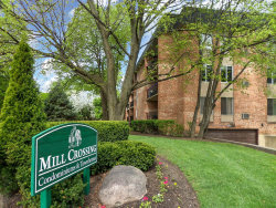 Photo of 1041 N Mill Street, Unit Number 203, NAPERVILLE, IL 60563 (MLS # 10055286)