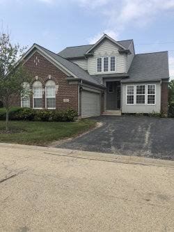Photo of 9318 Dunmore Drive, ORLAND PARK, IL 60462 (MLS # 10055484)