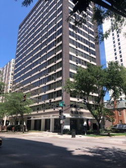 Photo of 360 W Wellington Avenue, Unit Number 12F, CHICAGO, IL 60657 (MLS # 10055763)