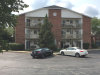 Photo of 1375 Cunat Court, Unit Number 2C, LAKE IN THE HILLS, IL 60156 (MLS # 10055899)