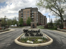 Photo of 125 Lakeview Drive, Unit Number 310, BLOOMINGDALE, IL 60108 (MLS # 10058885)