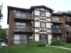Photo of 3642 W 119th Street, Unit Number 103, ALSIP, IL 60803 (MLS # 10065719)