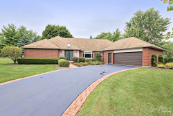 Photo of 25942 N Tahoe Court, LONG GROVE, IL 60060 (MLS # 10079534)