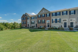 Photo of 1639 Deer Pointe Drive, Unit Number 1042, SOUTH ELGIN, IL 60177 (MLS # 10081584)
