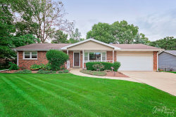 Photo of 910 Nippersink Road, SPRING GROVE, IL 60081 (MLS # 10082806)