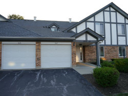 Photo of 9243 Montgomery Drive, Unit Number 9243, ORLAND PARK, IL 60462 (MLS # 10087669)