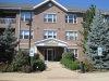 Photo of 10 N Gilbert Street, Unit Number 203, SOUTH ELGIN, IL 60177 (MLS # 10090030)