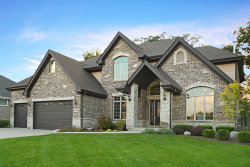 Photo of 14334 Fawn View Circle, ORLAND PARK, IL 60467 (MLS # 10091059)