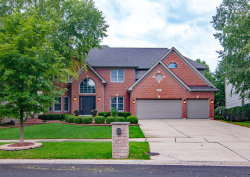 Photo of 3543 Stackinghay Drive, NAPERVILLE, IL 60564 (MLS # 10096205)