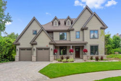 Photo of 828 Shannon Lake Court, WESTMONT, IL 60559 (MLS # 10103624)