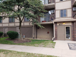 Photo of 1674 Ishnala Drive, Unit Number 102, NAPERVILLE, IL 60565 (MLS # 10105437)