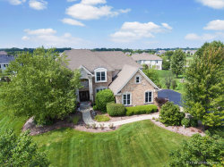 Photo of 4135 River View Drive, ST. CHARLES, IL 60175 (MLS # 10110051)