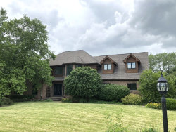 Photo of 6909 Tall Grass Court, SPRING GROVE, IL 60081 (MLS # 10124902)