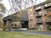 Photo of 235 N Mill Road, Unit Number 417B, ADDISON, IL 60101 (MLS # 10129774)