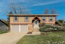 Photo of 231 Freeport Drive, BLOOMINGDALE, IL 60108 (MLS # 10132639)