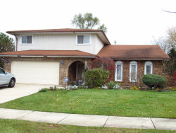 Photo of 9124 Concord Drive, ORLAND PARK, IL 60462 (MLS # 10133012)