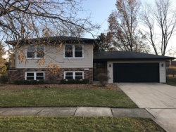 Photo of 9935 Avenida Del Norte Street, ORLAND PARK, IL 60462 (MLS # 10134547)
