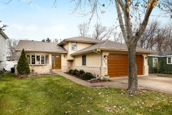 Photo of 1030 Saylor Street, DOWNERS GROVE, IL 60516 (MLS # 10139302)