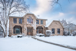 Photo of 268 Hillandale Drive, BLOOMINGDALE, IL 60108 (MLS # 10145868)