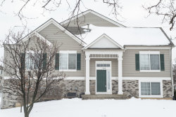 Photo of 110 Enclave Circle, Unit Number A, BOLINGBROOK, IL 60440 (MLS # 10148278)