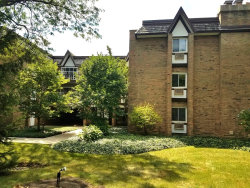 Photo of 360 Claymoor Street, Unit Number 2F, HINSDALE, IL 60521 (MLS # 10151207)