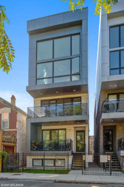 Photo of 1537 W Fry Street, Unit Number 2, CHICAGO, IL 60642 (MLS # 10155120)
