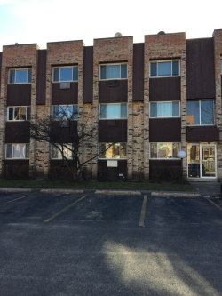 Photo of 8641 1/2 W Foster Avenue, Unit Number 2A, CHICAGO, IL 60656 (MLS # 10165015)