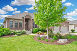 Photo of 350 Andover Drive, OSWEGO, IL 60543 (MLS # 10167424)