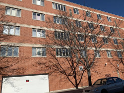 Photo of 2738 S Wentworth Avenue, Unit Number 4A, CHICAGO, IL 60616 (MLS # 10167530)