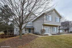 Photo of 19 Windsor Circle, Unit Number B, SOUTH ELGIN, IL 60177 (MLS # 10169631)