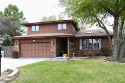 Photo of 14801 Becky Court, OAK FOREST, IL 60452 (MLS # 10170936)
