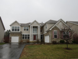 Photo of 2005 Fountain Grass Court, BARTLETT, IL 60103 (MLS # 10249087)