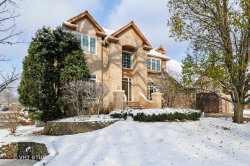 Photo of 2231 River Woods Drive, NAPERVILLE, IL 60565 (MLS # 10249951)