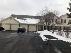 Photo of 1243 Streamwood Lane, Unit Number 347, VERNON HILLS, IL 60061 (MLS # 10251882)