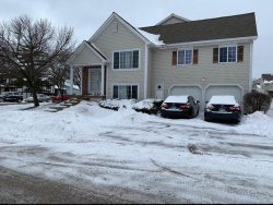 Photo of 6238 Nugget Circle, Unit Number 6238, HANOVER PARK, IL 60133 (MLS # 10253233)