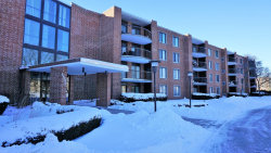 Photo of 1505 E Central Road, Unit Number 211B, ARLINGTON HEIGHTS, IL 60005 (MLS # 10253497)