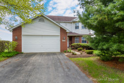 Photo of 100 S Fox Chase Drive, OSWEGO, IL 60543 (MLS # 10255767)