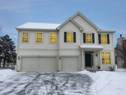 Photo of 95 W Norwell Lane, ROUND LAKE, IL 60073 (MLS # 10258021)