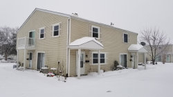 Photo of 325 Marcia Court, Unit Number C, BARTLETT, IL 60103 (MLS # 10259309)