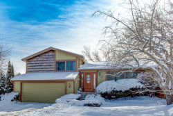 Photo of 497 Sequoia Trail, ROSELLE, IL 60172 (MLS # 10259369)